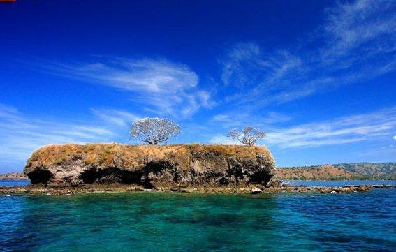 Jalan-Jalan ke Pulau Ular di Kabupaten Bima Timur notifikasiku.blogspot.com